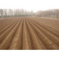土豆开沟培土机大姜开沟培土机大葱开沟培土机小型培土机视频