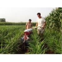田园管理机开沟培土田园管理机开沟培土机的离合机果园开沟机