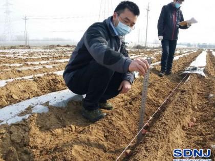 山东省开展马铃薯机械化生产关键技术与装备试验验证活动(图)