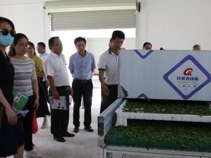 广西来宾市举行新型农机具作业现场演示会