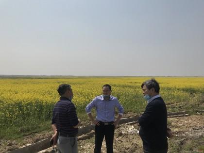 油菜毯状苗机械化高效移栽技术试验示范工作在江西扎实推进