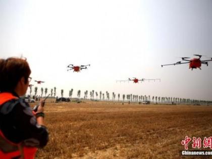 农业农村部:2025年设施种植机械化水平总体达50%以上