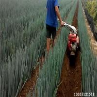 厂家批发葱沟机一机多用大葱开沟培土机