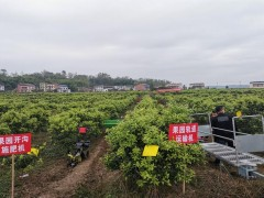 重庆梁平开展果园机械化生产田间活动