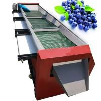 蓝莓筛选机